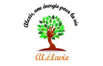 Al.é.lavie: Mise en place d'un groupe d'échanges
